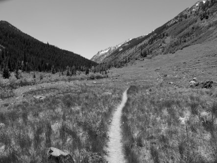 The trail often opens into beautiful meadows. Affording views of the surrounding peaks