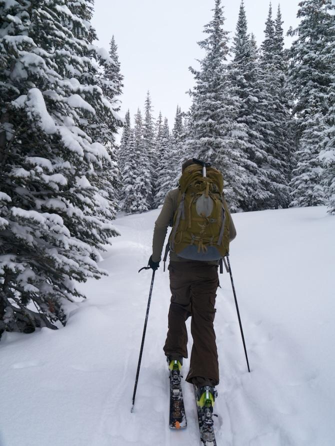 Dayton leads the way on skiis